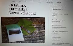 Entrevista en la revista cuatrobastardos.com por María Laura Paredes