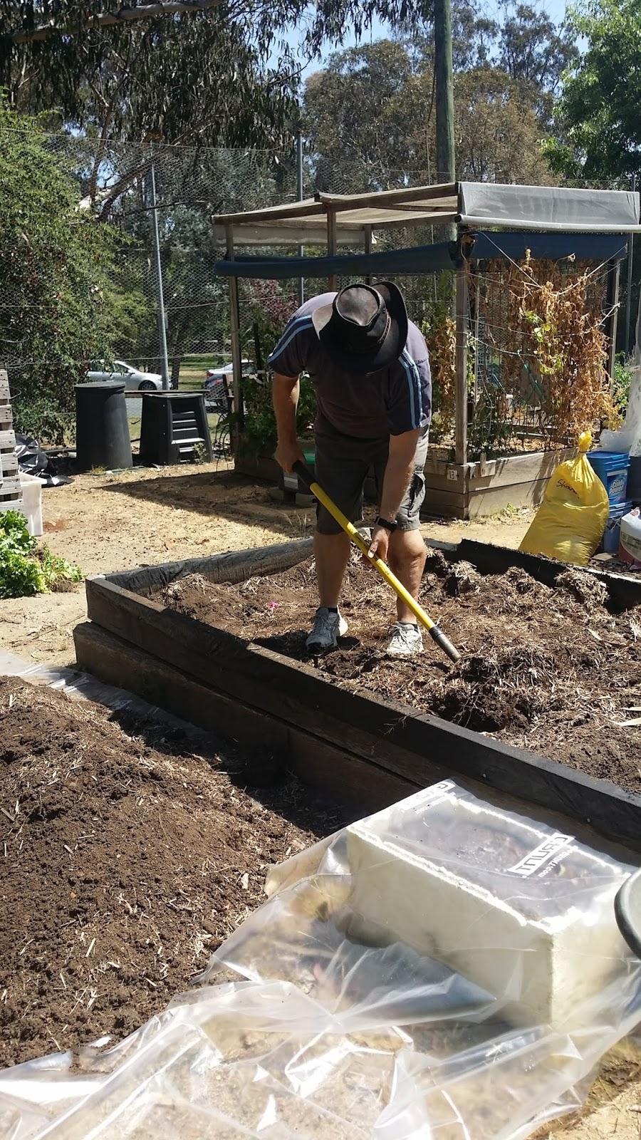 Sarah Stewart Got Me A Plot In A Community Garden