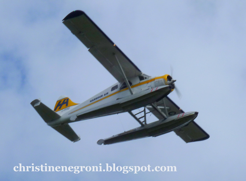 Sea Plane Flight Is Medicine for Modern Air Travel - Flying Lessons