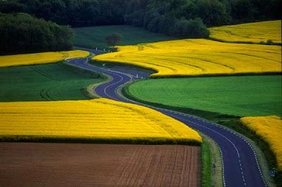 Εντυπωσιακοί δρόμοι διασχίζουν φυσικά τοπία!