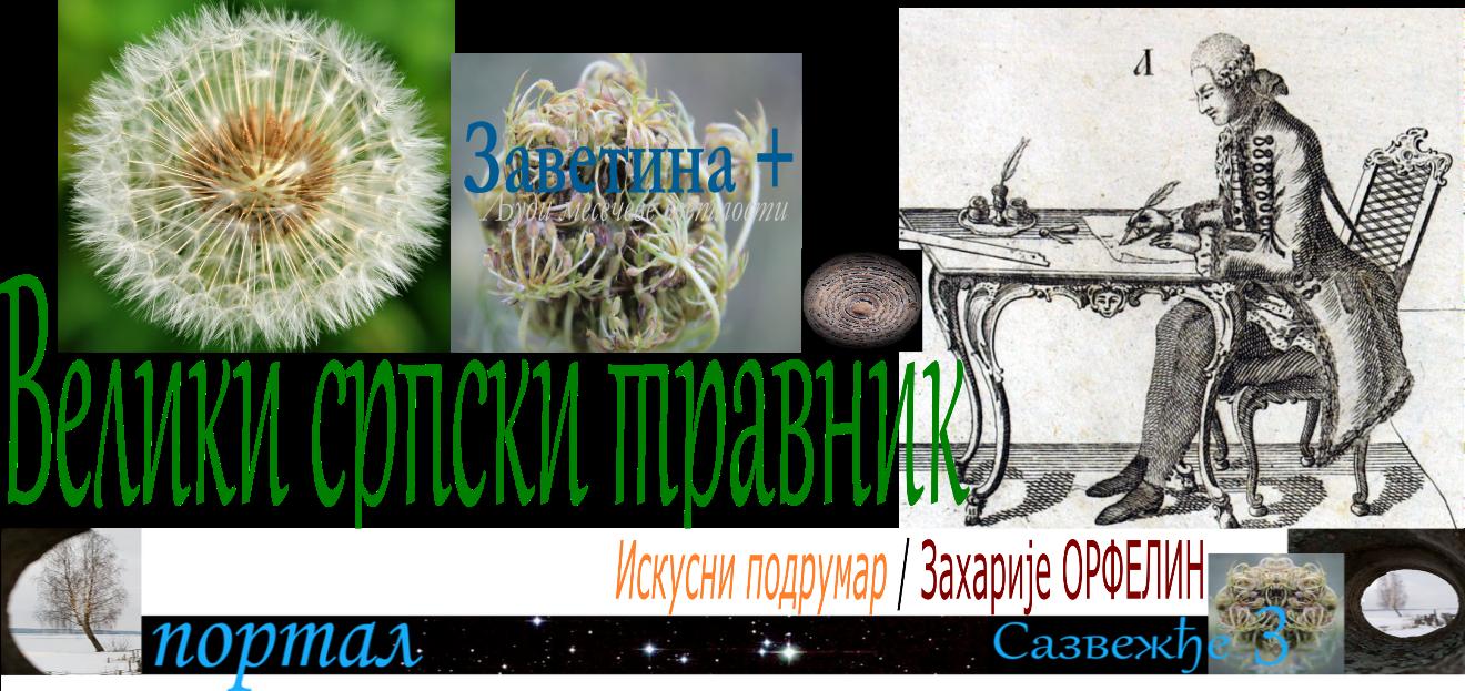 Велики српски травник