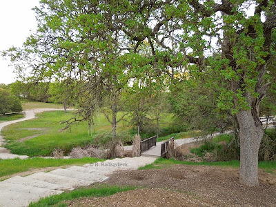 The Snead/Ramboiullet Trail in Paso Robles, © B. Radisavljevic