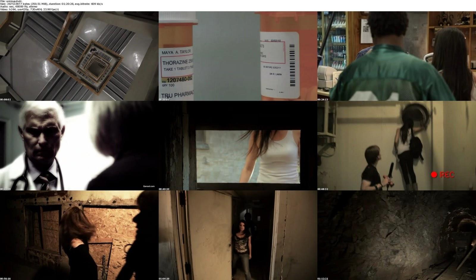 Animus+(2013)+DVDRip+350MB++Hnmovies