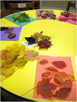 What Would You Do With It? Wednesdays: Stalks, Leaves, and Stones Math