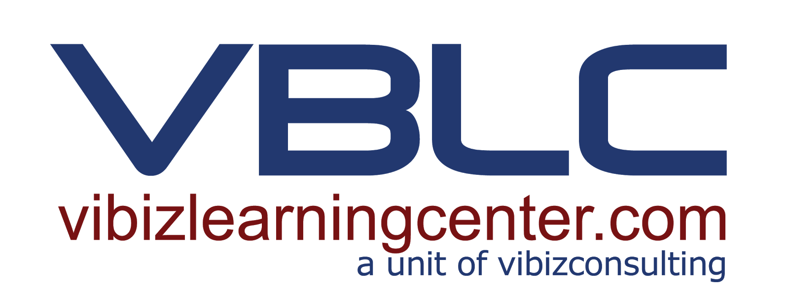 Vibiz Learning Center