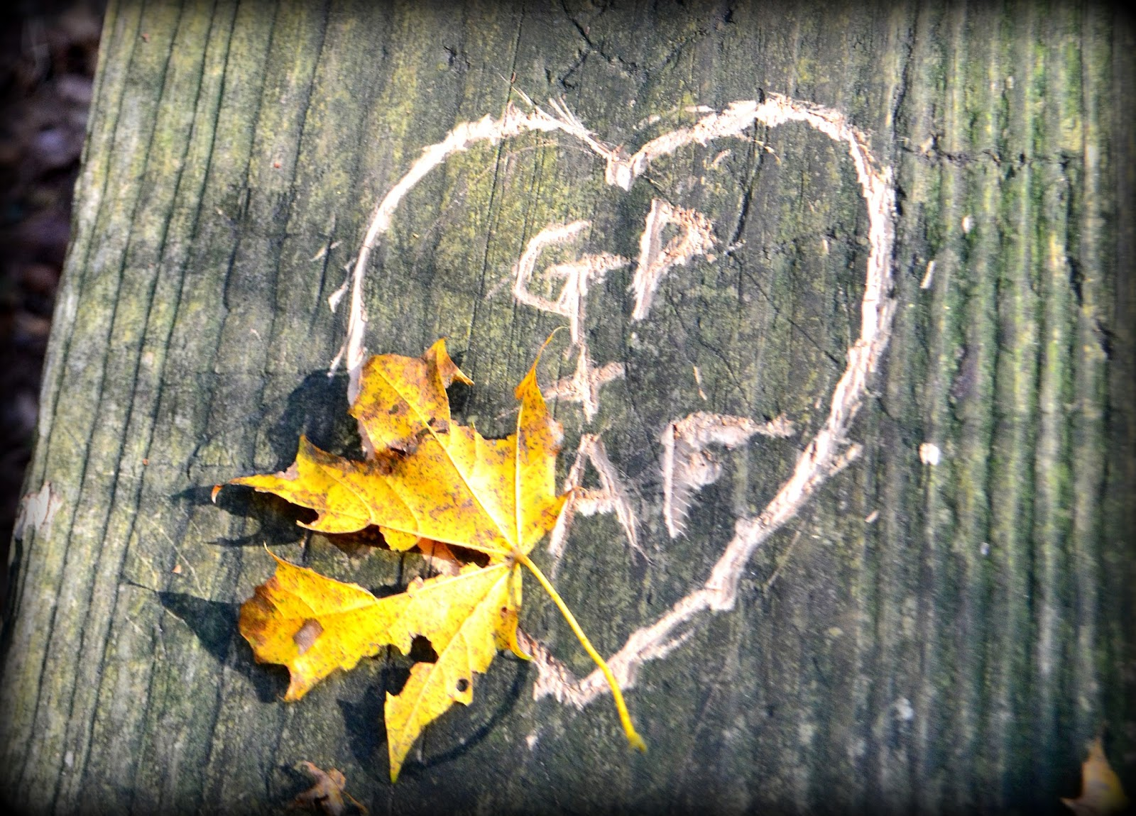 love, leaf, carving, newbury, old town hill