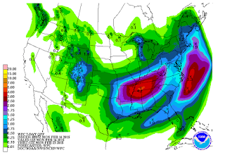 7 Day Precipitation