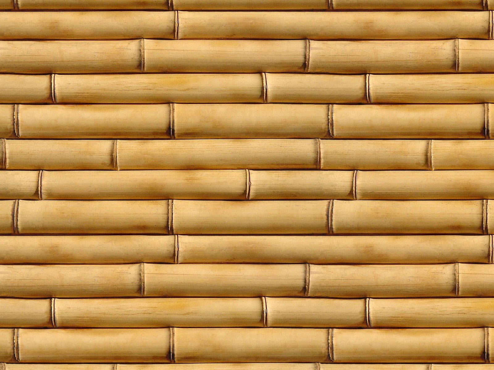 Wallpapers bamboo wall wallpapers for Wallpaper for walls