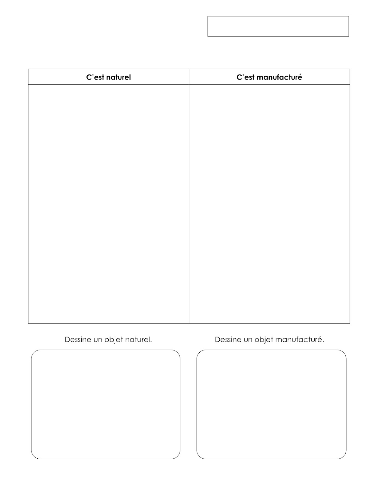 Collection Celery Experiment Worksheet Photos - Studioxcess