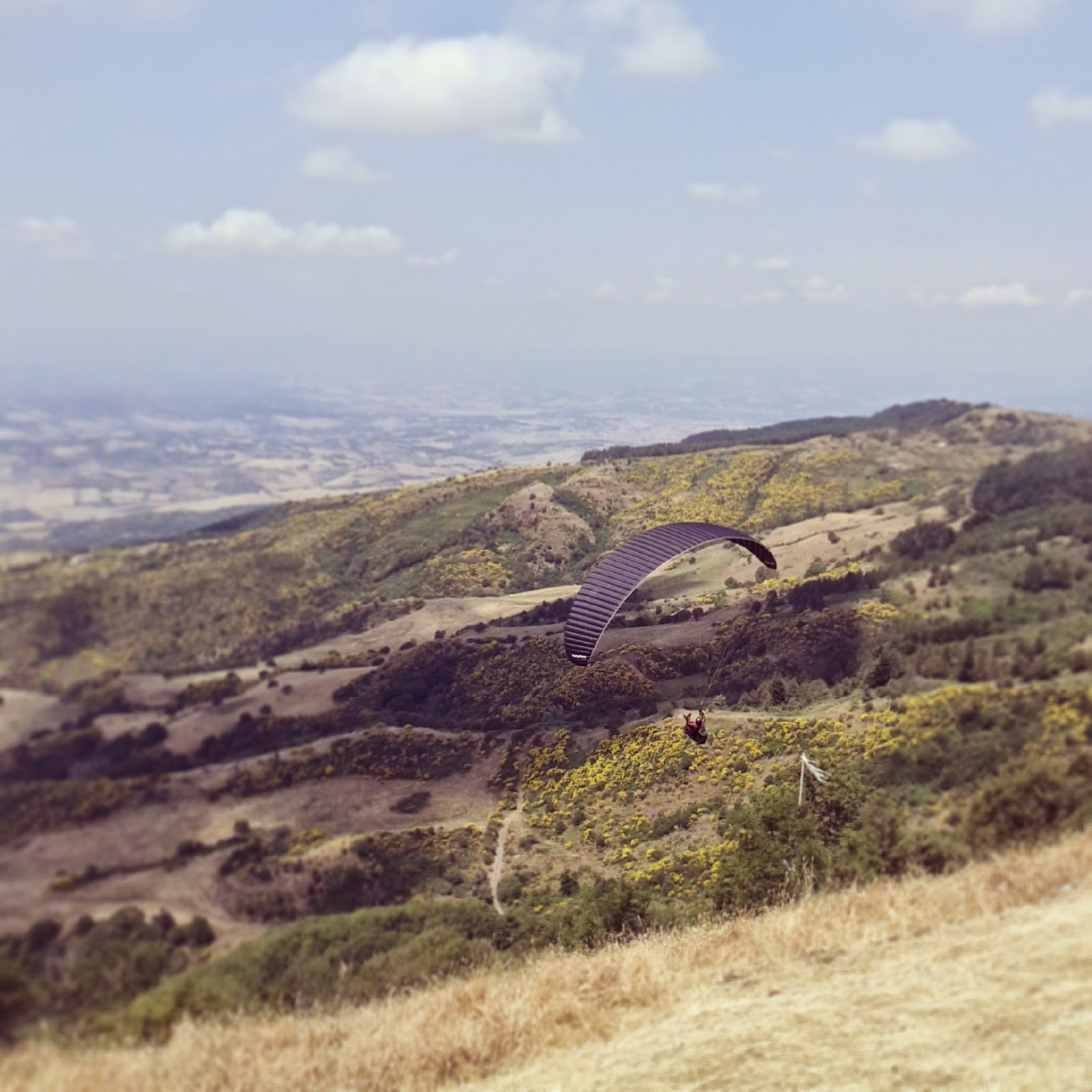 Paraglider flying over the hills of Maremma and Val d'Orcia