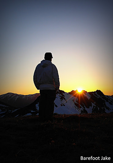 Grey wolf sunset