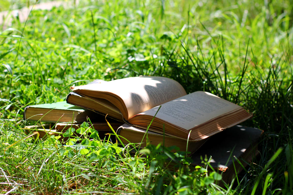Libros de Sabiduría
