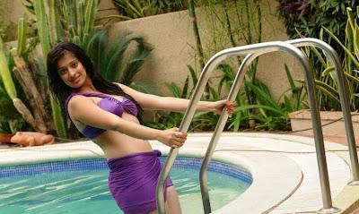 Lakshmi Rai hot bikini Photos