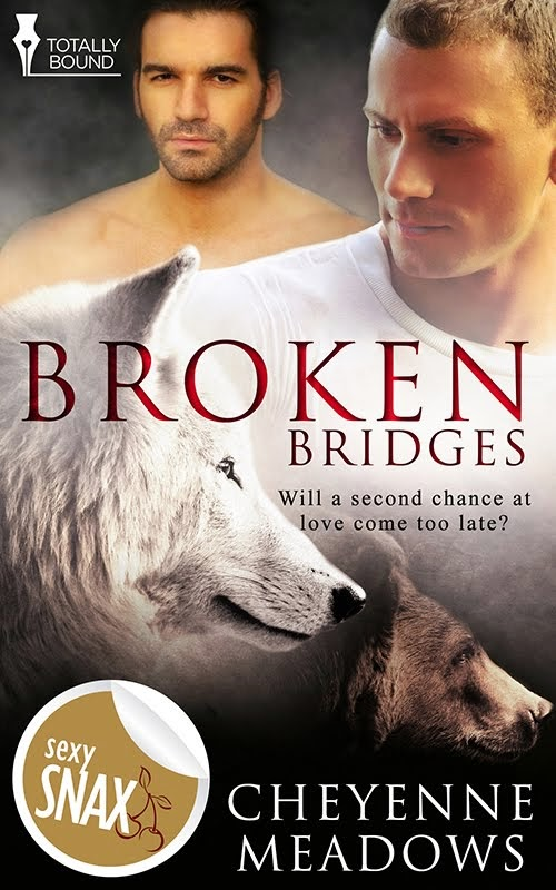 Broken Bridges