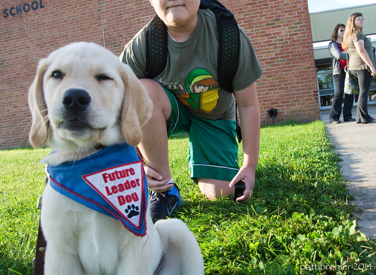 A low, close shot of a small yellow golden retriever/lab mix puppy wearing a blue Future Leader Dog bandana. The puppy is sitting in the grass looking at the camera and it looks like he is winking with his left eye. Behind him to the right is a young boy kneeling on one knee and wearing a backpack. The boy's face is cut off, you can just see his chin and mouth. In the background is a red brick wall and two women standing on the far right looking to the right.