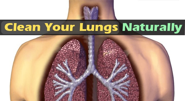 Clean-Your-Lungs-From-Nicotine-Naturally-with-this-receipe