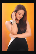 Aksha Latest Glamorous Photo Session Gallery-thumbnail-12