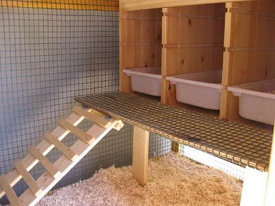 Chicken coop is a kind of enclosure in which the chickens are kept