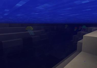 Águas vivas