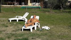 Séjour sportif en Luberon