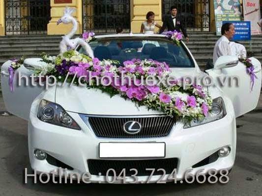Cho thuê xe cưới mui trần Lexus IS250 đời mới nhất