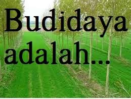 Definisi Kata BudiDaya