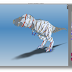 Fabrica tus propios modelos 3D