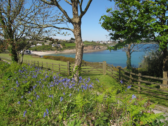 Falmouth, Cornwall, MEI Conferences