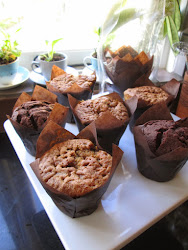 Tulip Paper Muffin Cases (Chocolate colour)