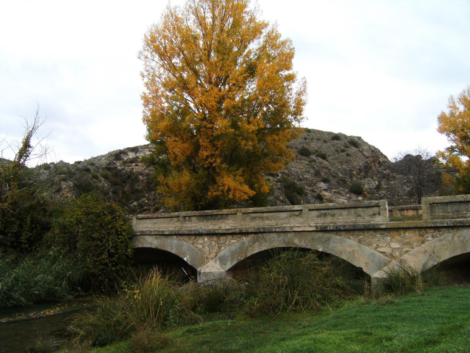 Terraqueoscopio puente en villel de mesa for Villel de mesa