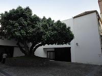 Plaza de la Higuera del Museo Picasso, Centro Histórico de Málaga