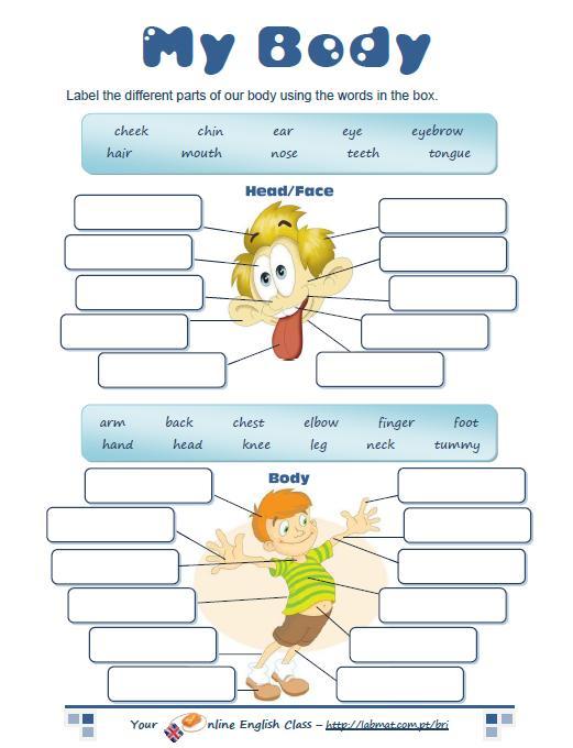 English for kids: u0427u0430u0441u0442u0438 u0442u0435u043bu0430