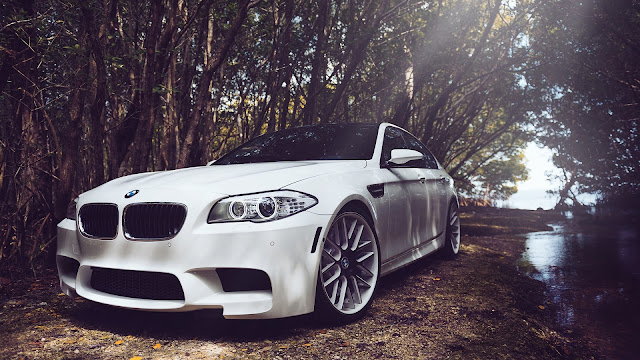 BMW M5 F10 white car in forest HD Wallpaper