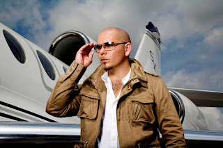 Pitbull Sunglasses HD Wallpaper