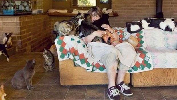 Hebat, Wanita ini Mampu Mengadopsi Ratusan Kucing Dirumahnya