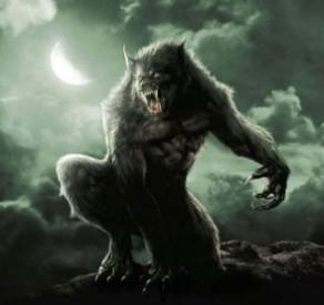 Seu Lobo