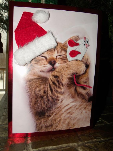 The best cat-related greeting card I got for Christmas