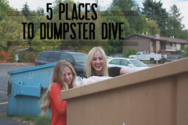 ethical appeal on dumpster diving Dumpster diving definition - in the it world, dumpster diving refers to using various methods to get information about a technology user in general.