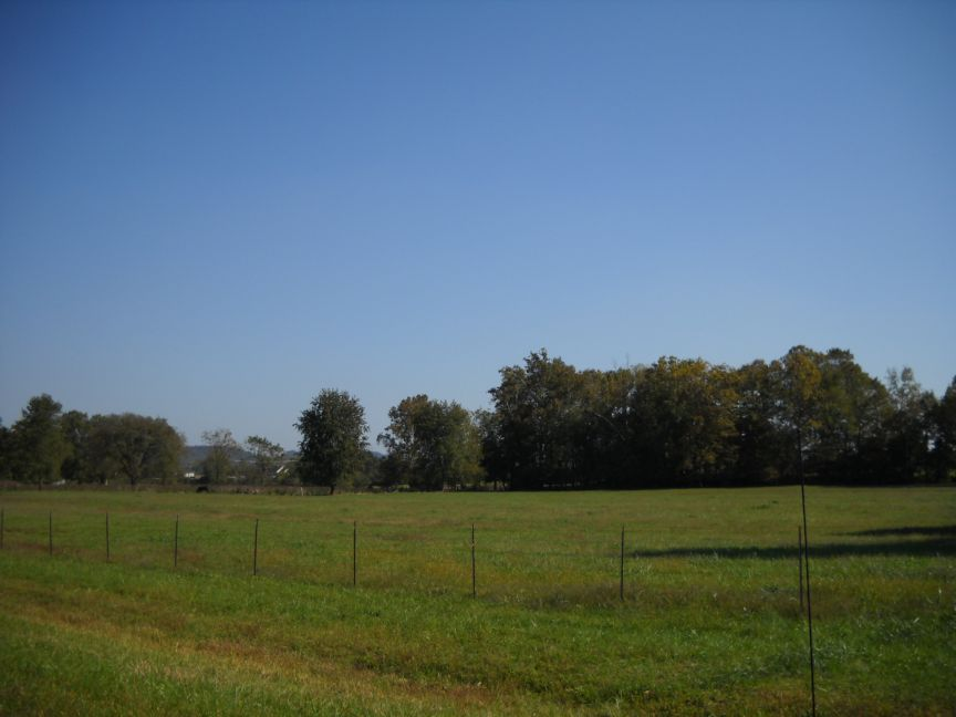 greenup single guys Flatwoods is a home rule-class city in greenup county, kentucky, united statesflatwoods is considered a suburb of nearby ashland, although ashland itself is located in neighboring boyd county.