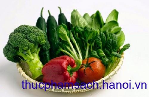 Thực phẩm sạch Hà Nội