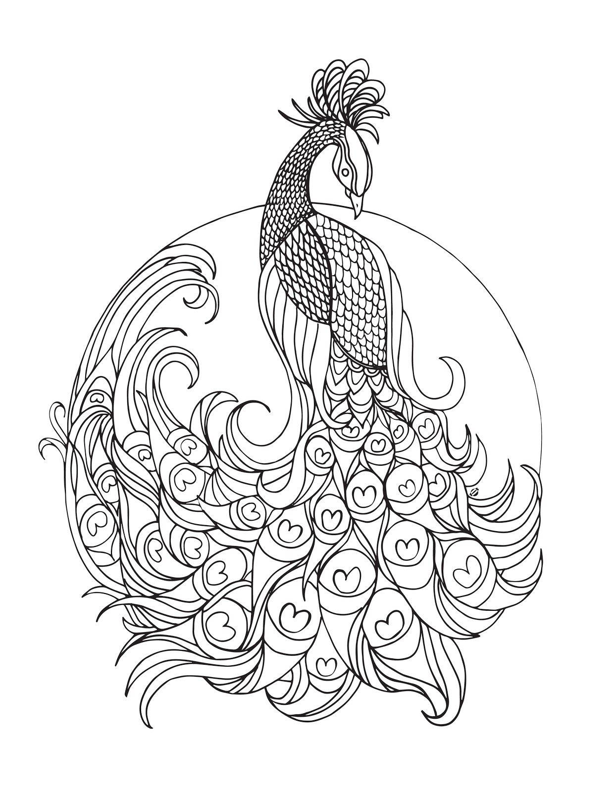 LostBumblebee ©2015 MDBN :: Grown Up Colouring / coloring Peacock :: Free - DONATE TO DOWNLOAD - PRINTABLE : : PERSONAL USE ONLY.