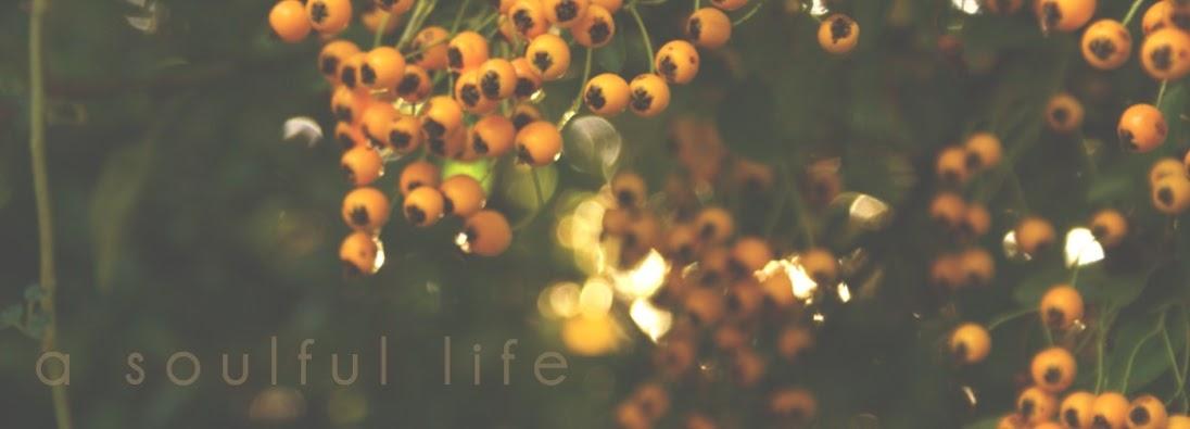 A Soulful Life