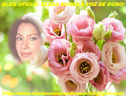 Blog Oficial Clara Nunes,A Voz de Ouro