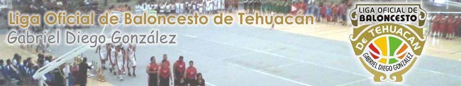 """Liga Oficial de Balonces """"Gabriel Diego González"""""""