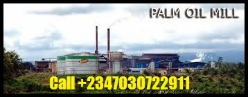 HOW TO SET UP A PALM OIL MILL REFINERY