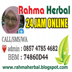 Admin Obat Perapat V Rahma Herbal