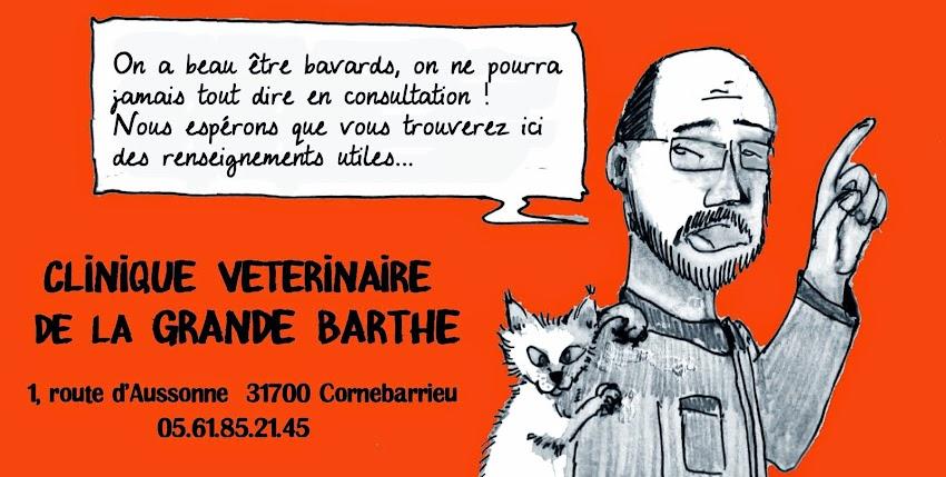 Clinique Vétérinaire de la Grande Barthe