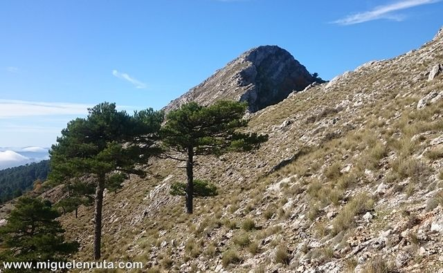 Visión-Pico-Almenara