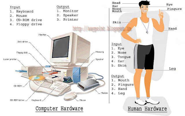 difference between computer applications and computer software
