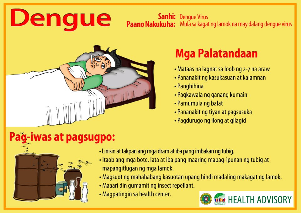 dengue hemorrhagic fever 2 Handbook for clinical management of dengue 1dengue - therapy 2dengue - diagnosis 3clinical medicine 4handbooks  df dengue fever dhf dengue.